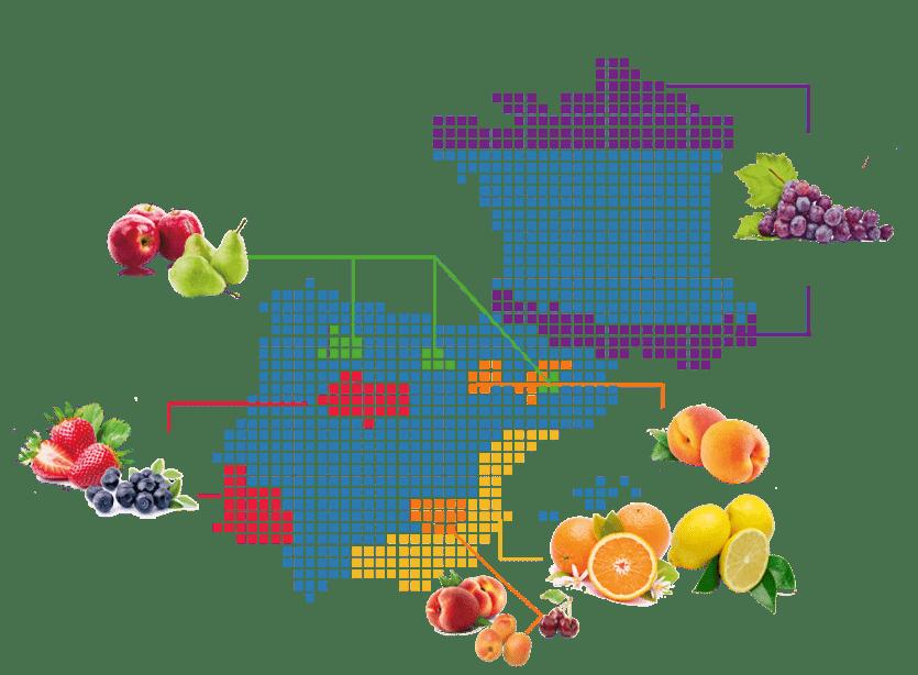 sector-agroalimentario_recursos-humanos_interim-aire