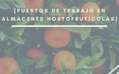 Trabajos en almacén hortofrutícola más demandados