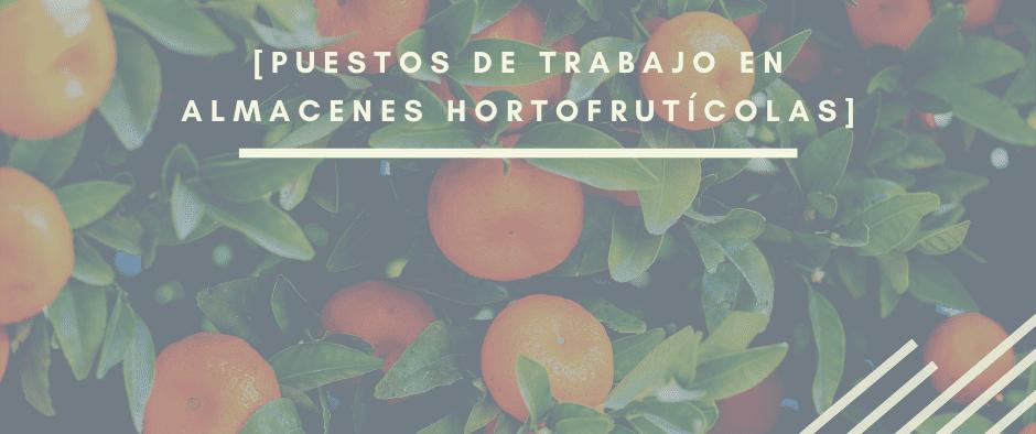Trabajos en almacén hortofrutícola_INTERIM-AIRE-ETT_INTERIM-GROUP (1)